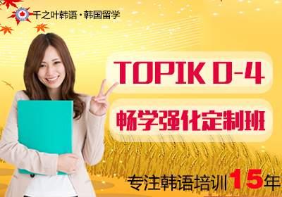 TOPIK0-4级畅学强化定制班