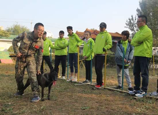 犬行动训导班