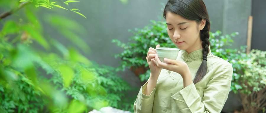 高级茶艺培训