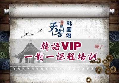 韩语vip一对一课程培训