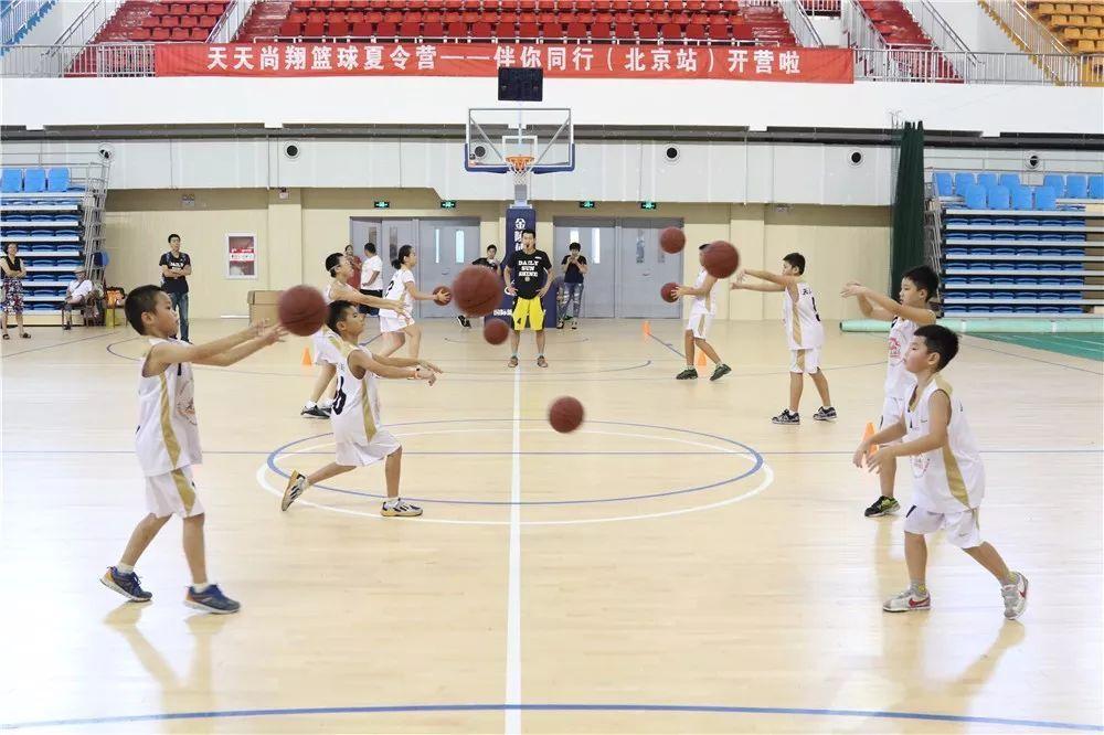 北京天天尚翔青少年篮球训练营 体育馆训练