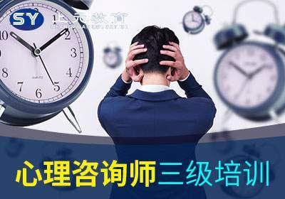 扬州国家心理咨询师三级
