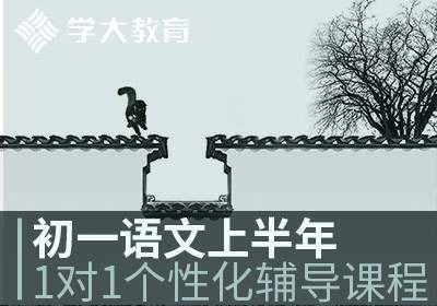 北京初一语文一对一个性化辅导课程上半年