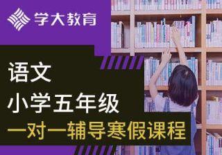 小学五年级语文一对一辅导寒假课程