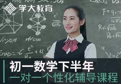 初一数学一对一个性化辅导课程下半年