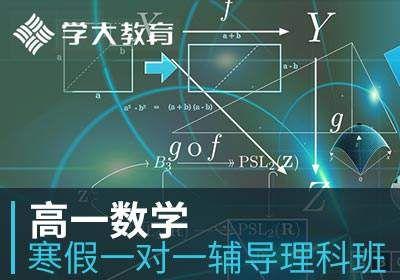 高一数学寒假一对一辅导理科