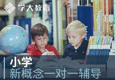 南昌学大教育小学新概念英语一对一辅导