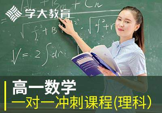 高一数学一对一辅导冲刺课程(理科)
