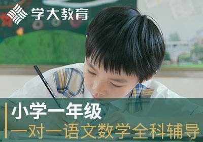 石家庄小学一年级一对一语文数学全科辅导