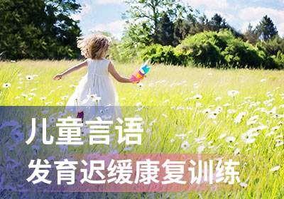 福州儿童言语发育迟缓康复训练