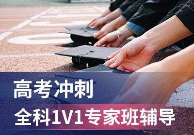 高考冲刺全科1V1专家班辅导