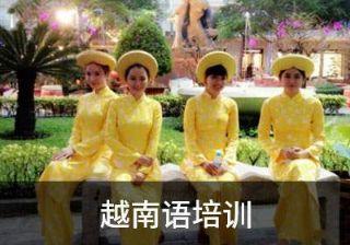 南京新视线新年寒假越南语速成班