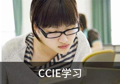 CCIE学习哪家好?有案例有真相