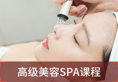 泉州专业的SPA芳香理疗培训