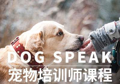DOGSPEAK宠物培训师课程