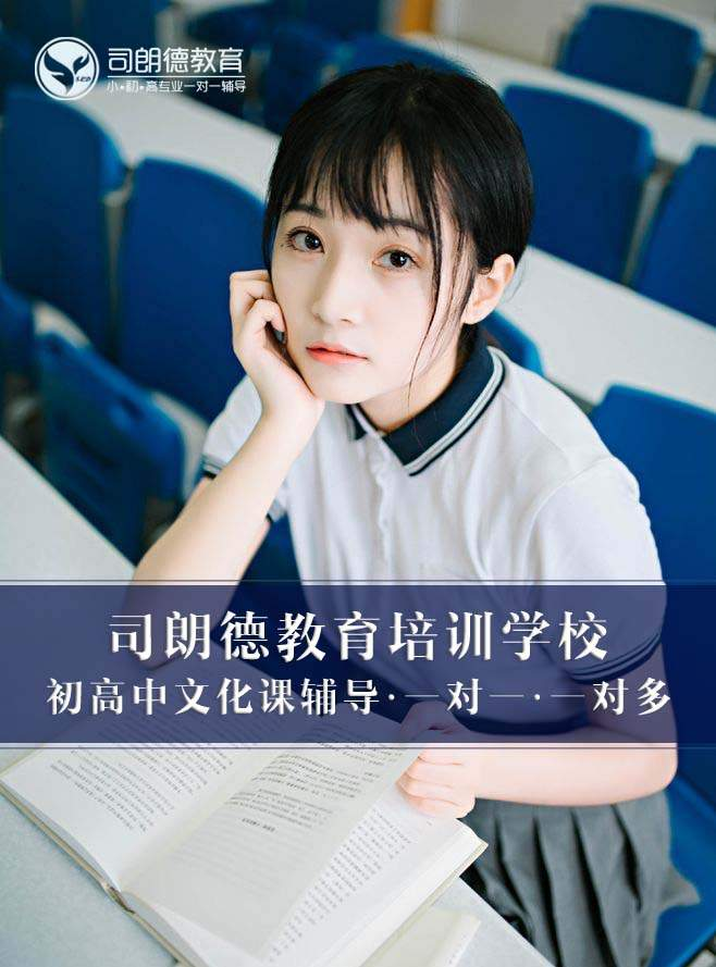 沈阳司朗德高三语文一对一、一对多初高中文化课补习