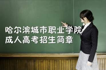 哈尔滨城市职业学院成人高考招生简章