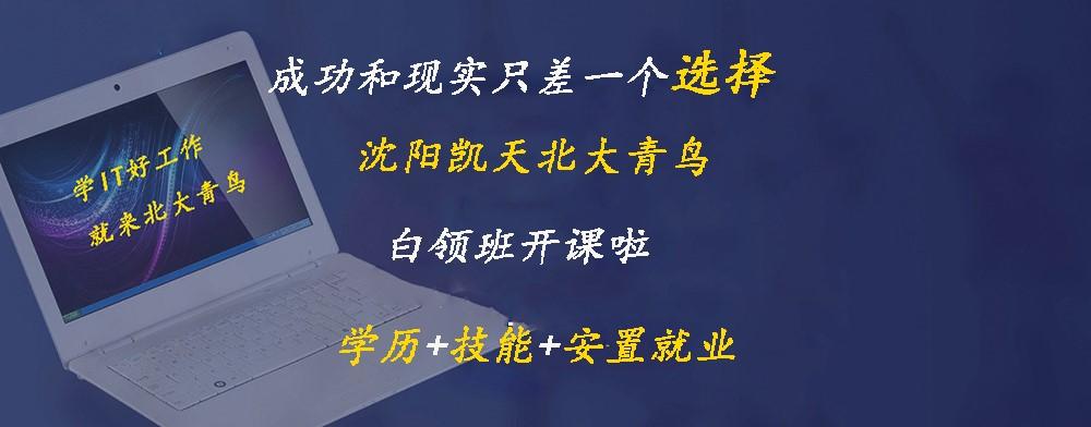 沈阳北大青鸟教育