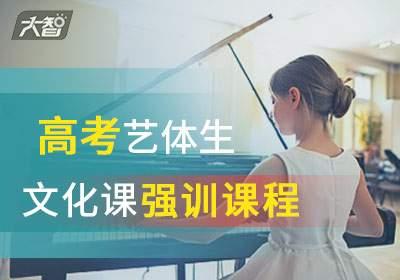 临沂高考艺体生文化课强训课程/辅导班.