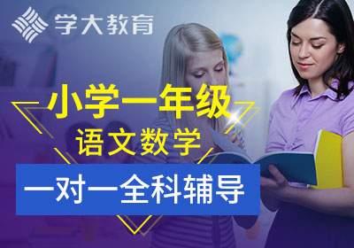 小学一年级语文数学一对一全科辅导