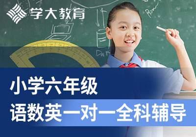 小学六年级语文数学英语一对一全科辅导