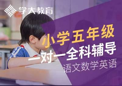 苏州小学五年级语文数学英语一对一全科辅导