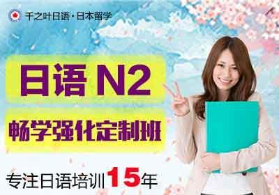 N2畅学强化定制班