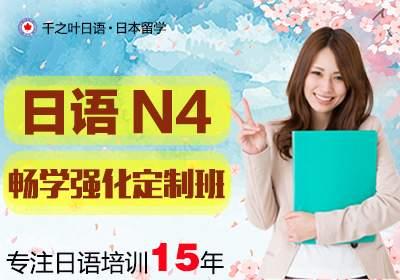 N4畅学强化定制班