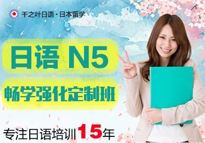 N5畅学强化定制班