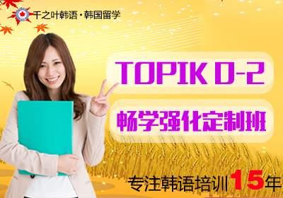 TOPIK0-2级畅学强化定制班