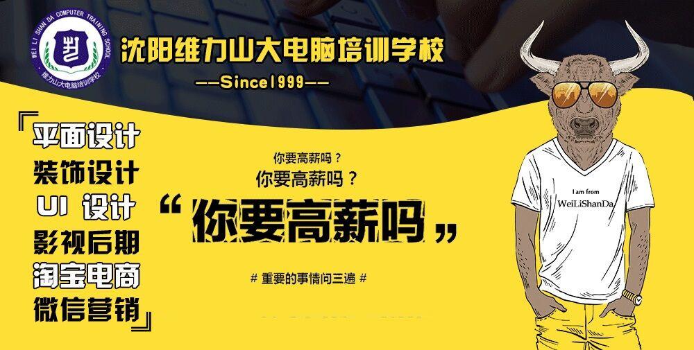 沈阳维力山大电脑培训学校