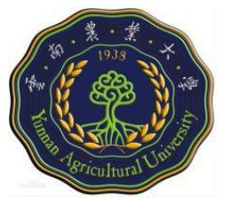 云南农业大学成人高考函授招生简章