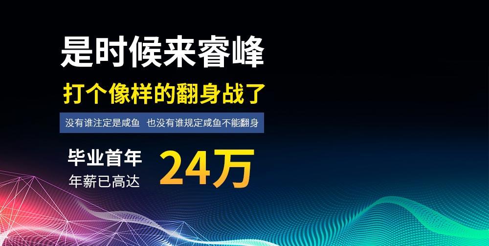 成都睿峰软件职业技能培训学校