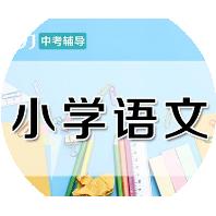 郑州五年级语文课程培训