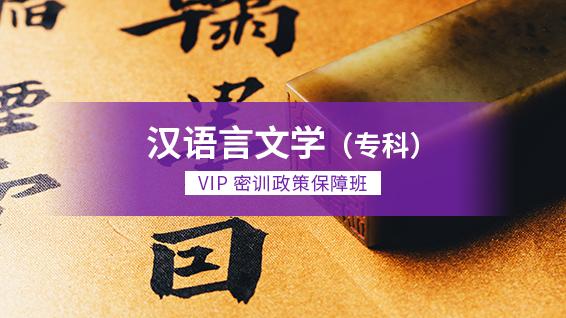 汉语言文学(专科)-VIP密训政策保障班