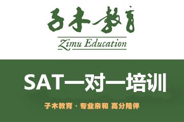 杭州SAT一对一培训