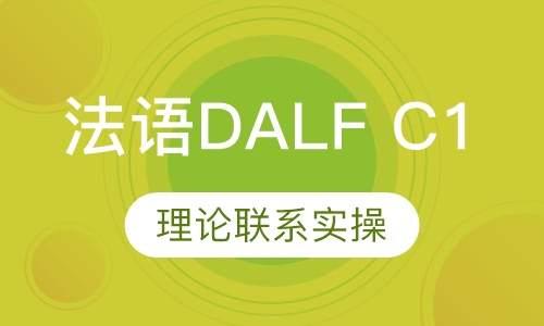 法语DALFC1