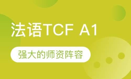 法语TCFA1
