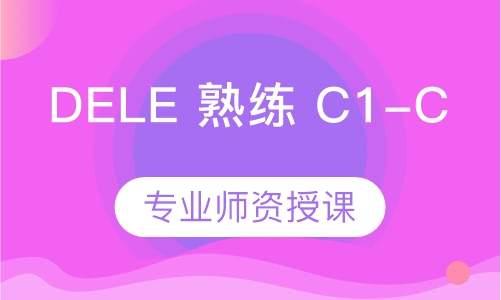 西班牙语DELE熟练(C1-C2)