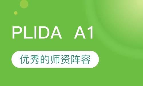 意大利语但丁语言等级考试PLIDAA1