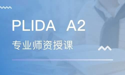意大利语但丁语言等级考试PLIDAA2