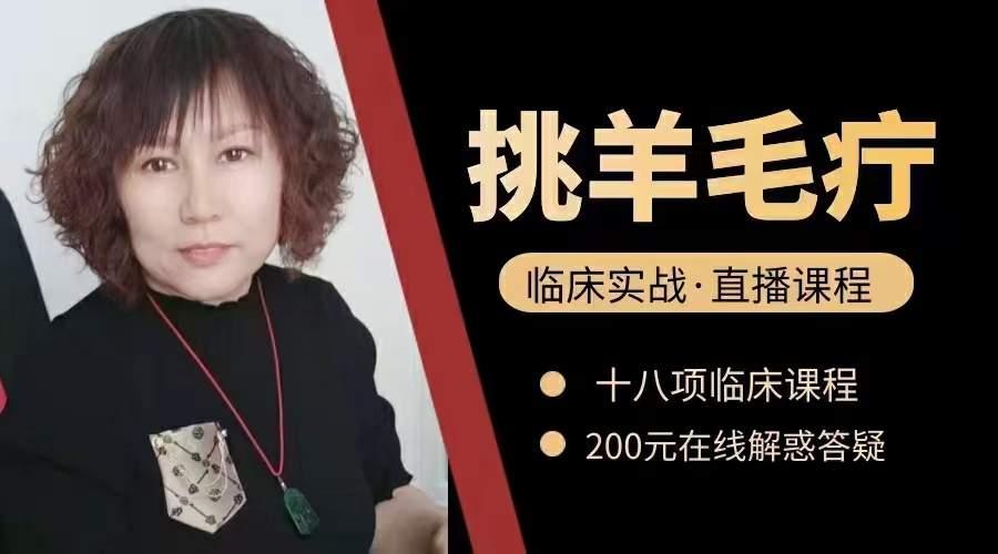 李红挑羊毛疔网络直播课学习培训