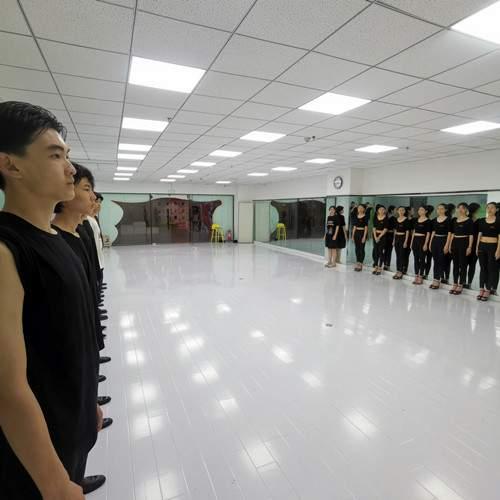 潍坊顶峰艺术教育