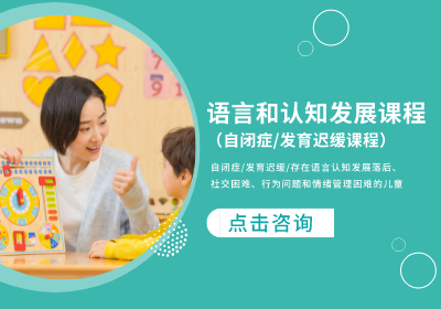 上海自闭症孤独症发育迟缓康复课程