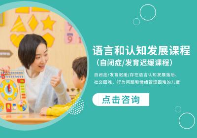 语言和认知发展课程(自闭症/孤独症/发育迟缓课程)