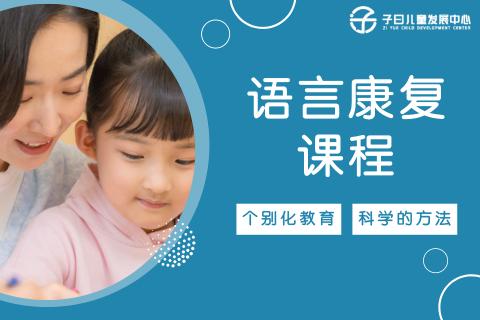 上海自闭症语言康复课程(不会说话语言发育迟缓)